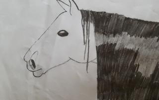 kresba kůň