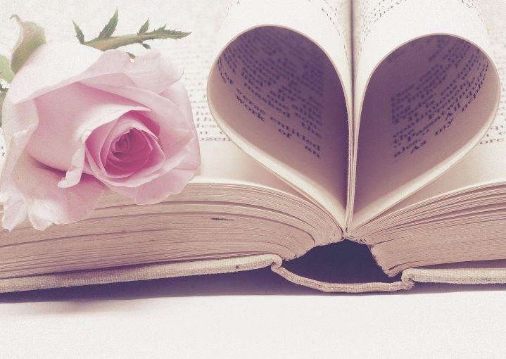 kniha s růží